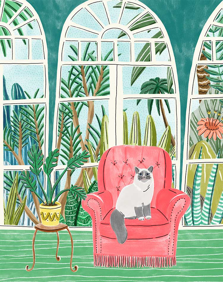 veronique de jong illustration cat fauteuil